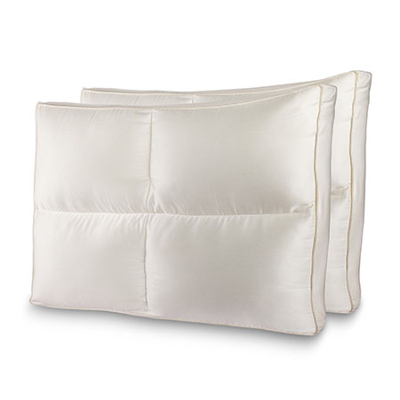 2 Pack of Luxury Plush Allergy Resistant Fiber Filled Bedding Pillow with Hypoallergenic Cotton Shell - GREAT for Allergy Sufferers! Fill is designed to maintain fluffy shape and support! Comfortable and supportive for all - back, side, or stomach sleepers! - $50 at Bed Bath and Beyond! - SHIPS FREE!